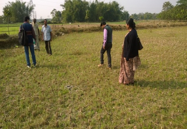 Pic-3: Collective farming -checking the growth of relay crop ( Lentil ) by the project team with the farmers.